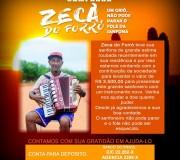 zeca-do-forro